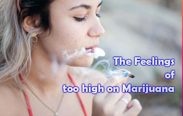 The Feelings of too high on Marijuana