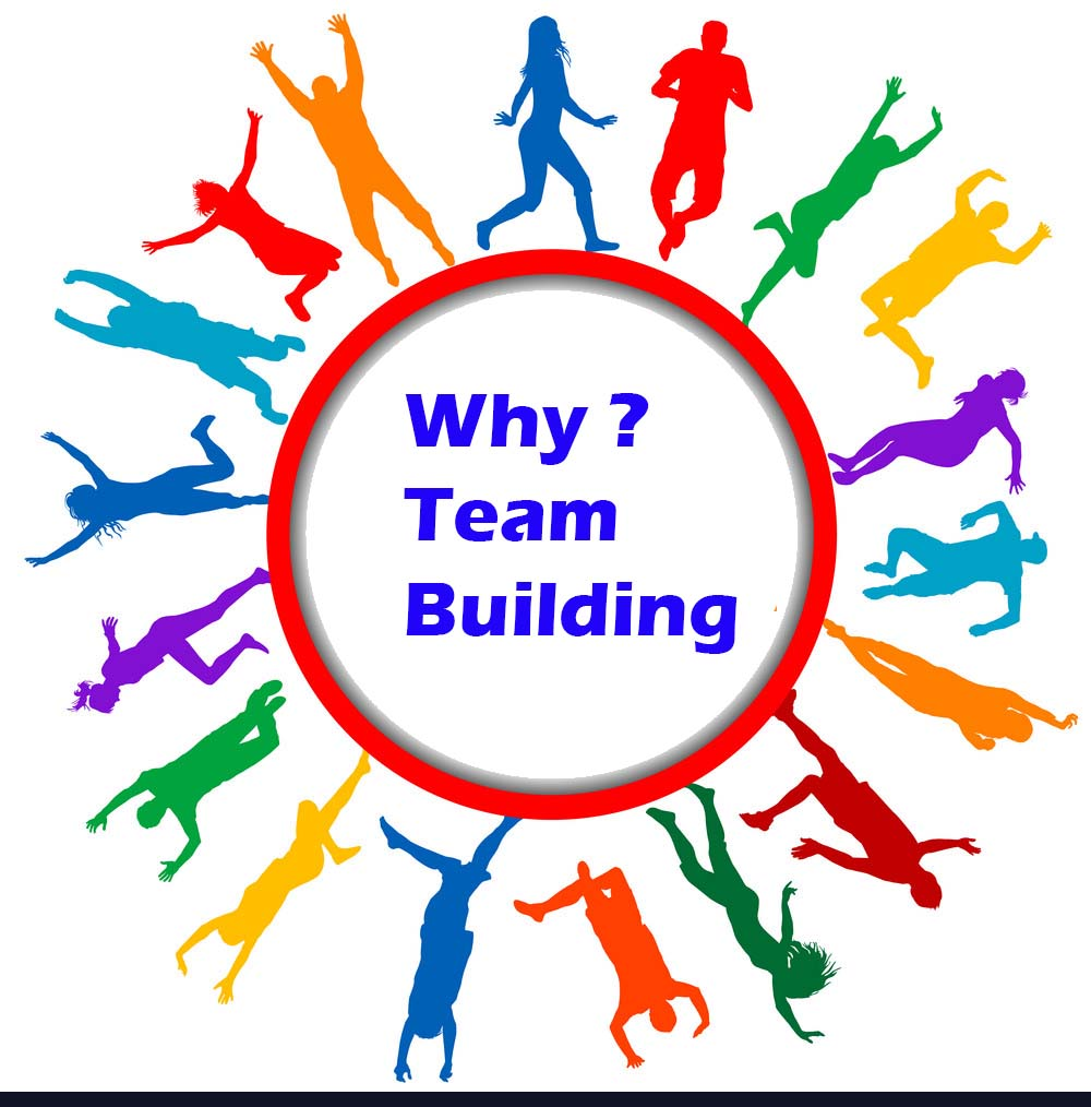 Team Building and Why It is Important