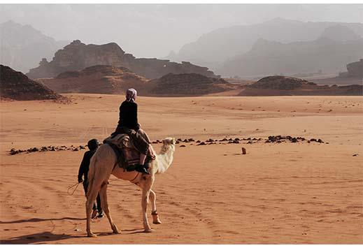 Camel Safari in Dubai