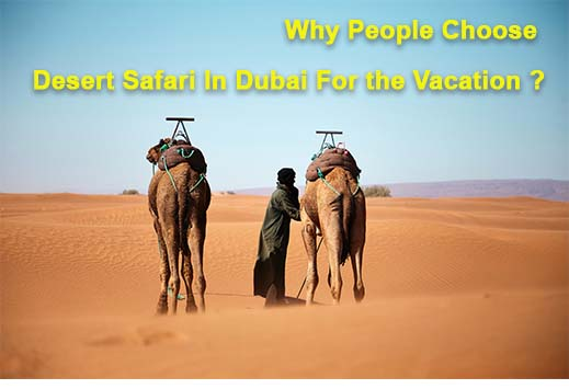 Why People Choose Desert Safari In Dubai For the Vacation
