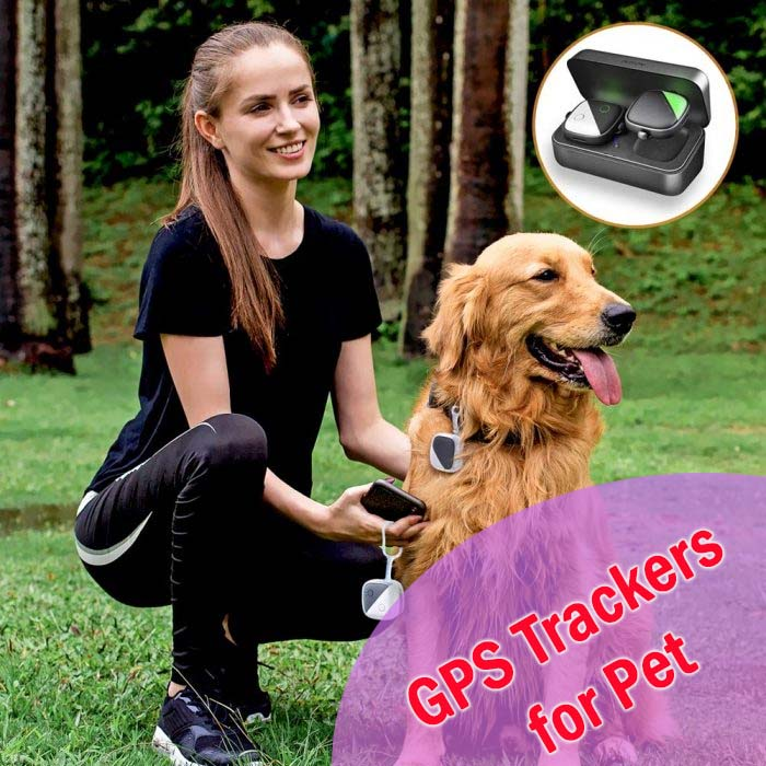 Advance GPS Trackers for Pet